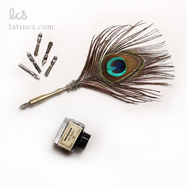 دسته قلم پر طاووس